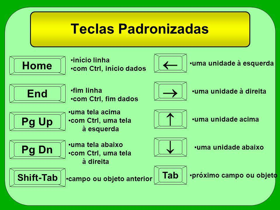   Teclas Padronizadas   Home End Pg Up Pg Dn Tab Shift-Tab