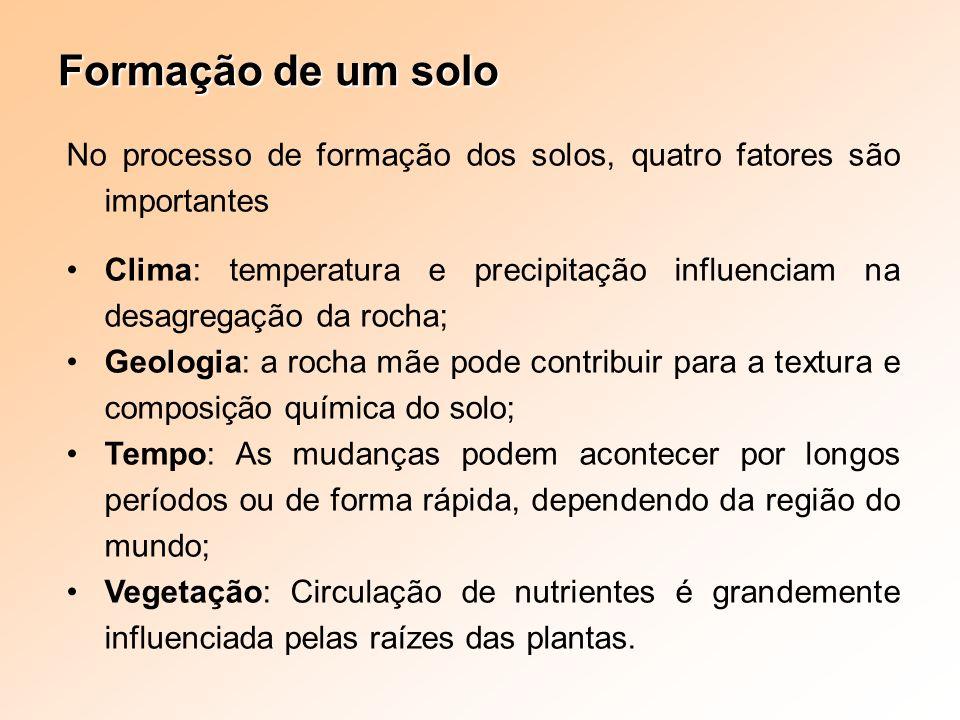 Formação de um solo No processo de formação dos solos, quatro fatores são importantes.