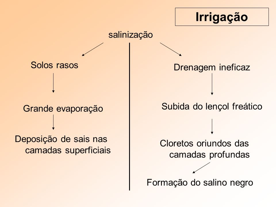 Irrigação salinização Solos rasos Drenagem ineficaz