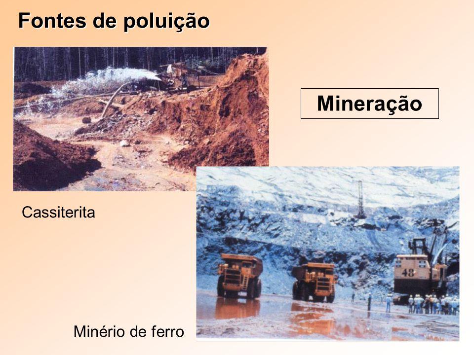 Fontes de poluição Mineração Cassiterita Minério de ferro