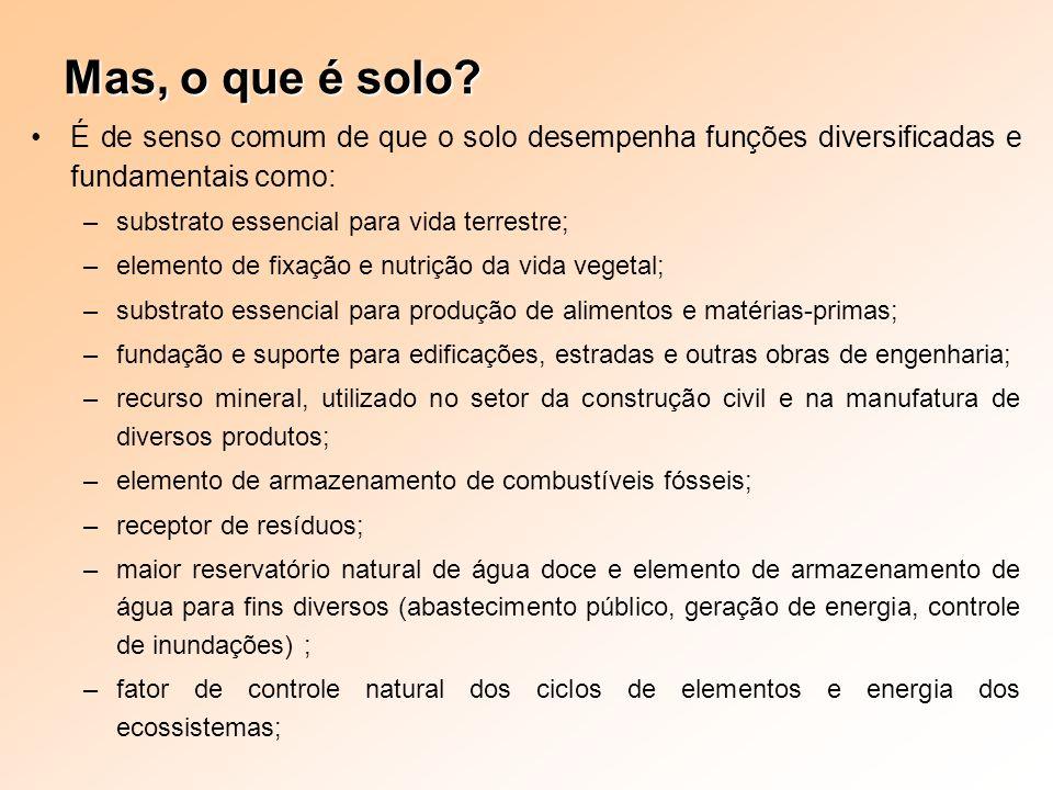 Mas, o que é solo É de senso comum de que o solo desempenha funções diversificadas e fundamentais como: