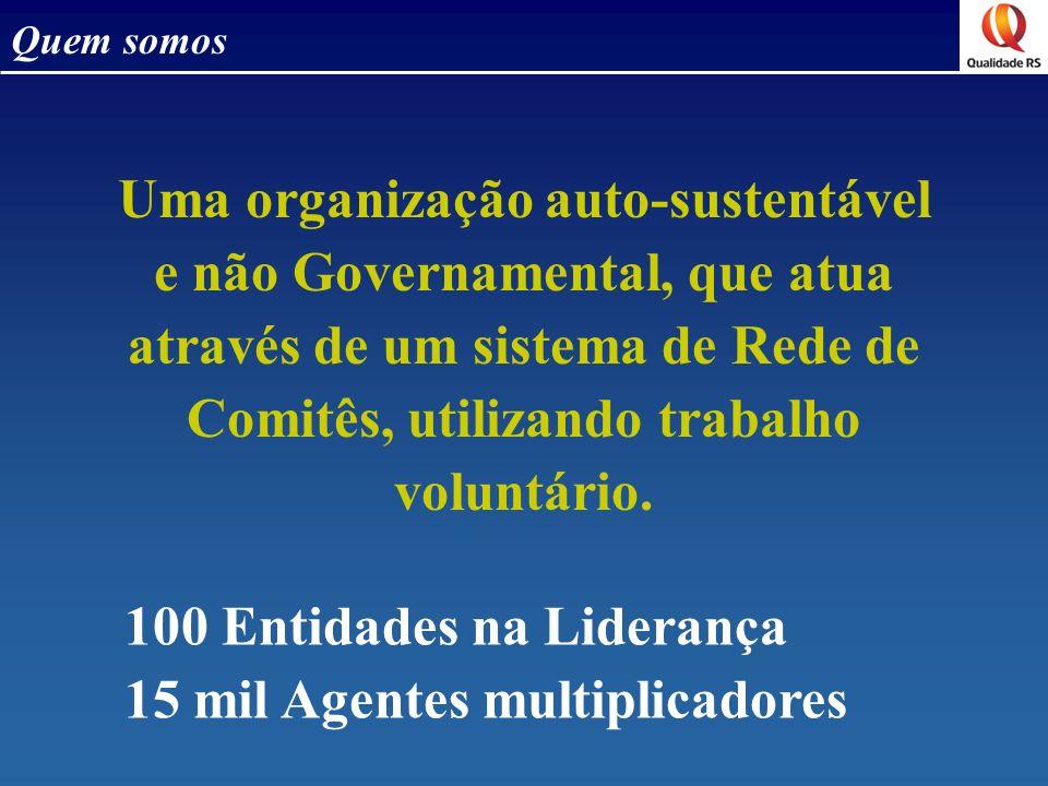 100 Entidades na Liderança 15 mil Agentes multiplicadores