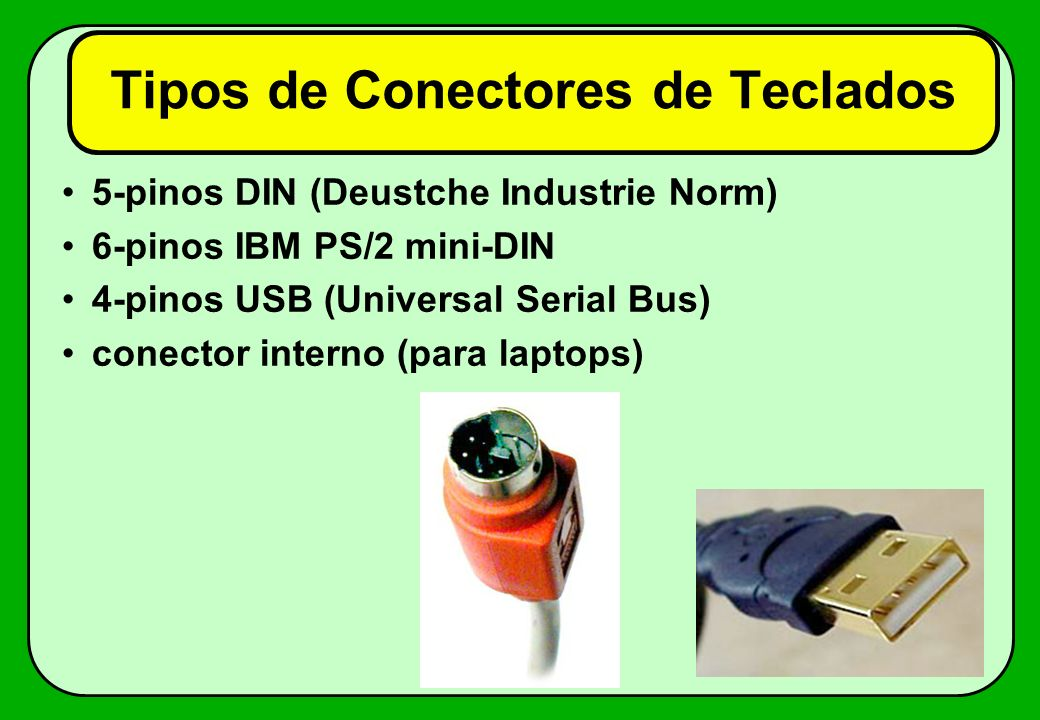 Tipos de Conectores de Teclados