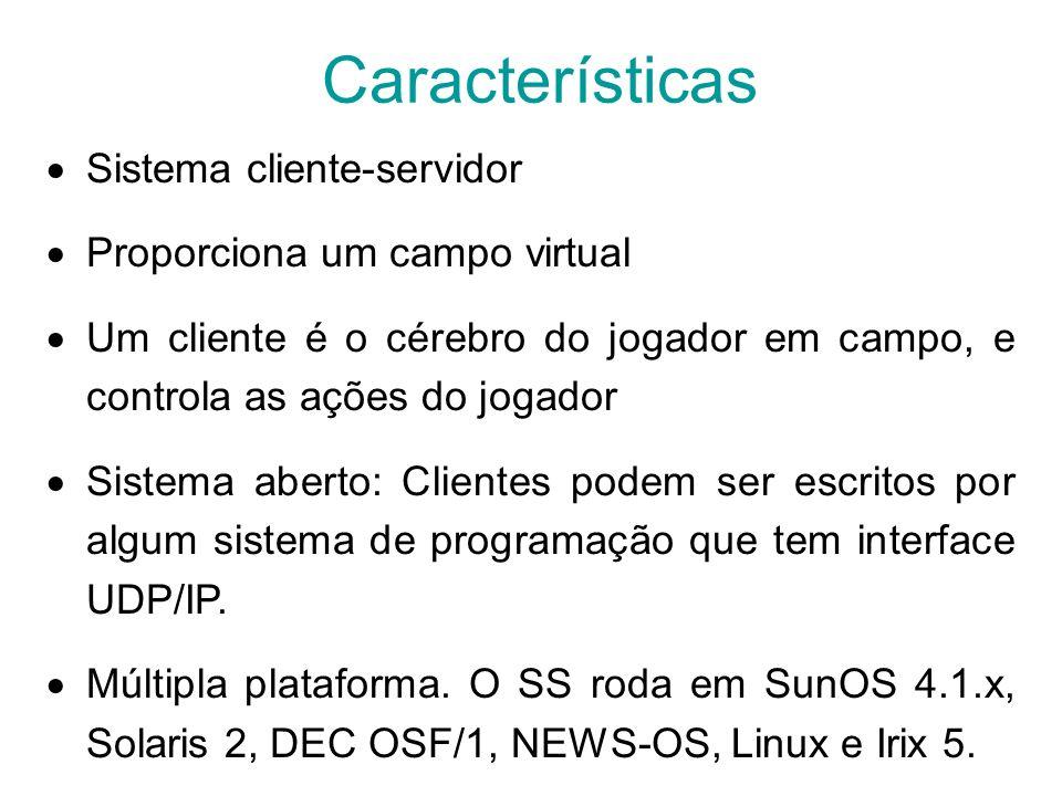 Características Sistema cliente-servidor Proporciona um campo virtual