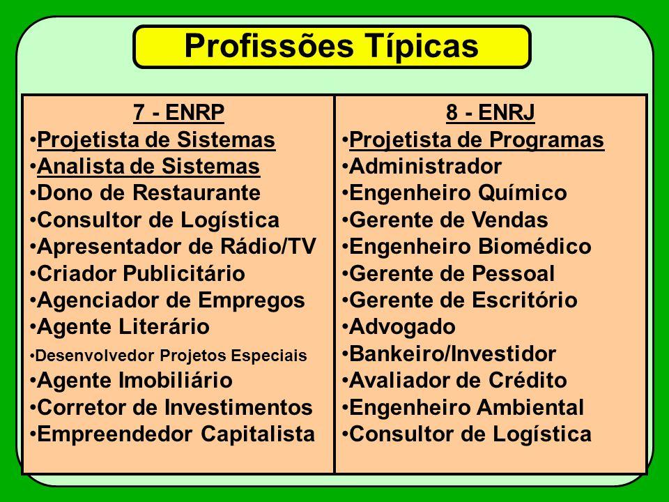 Profissões Típicas 7 - ENRP Projetista de Sistemas