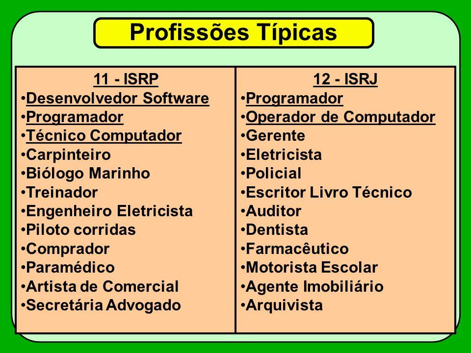 Profissões Típicas 11 - ISRP Desenvolvedor Software Programador
