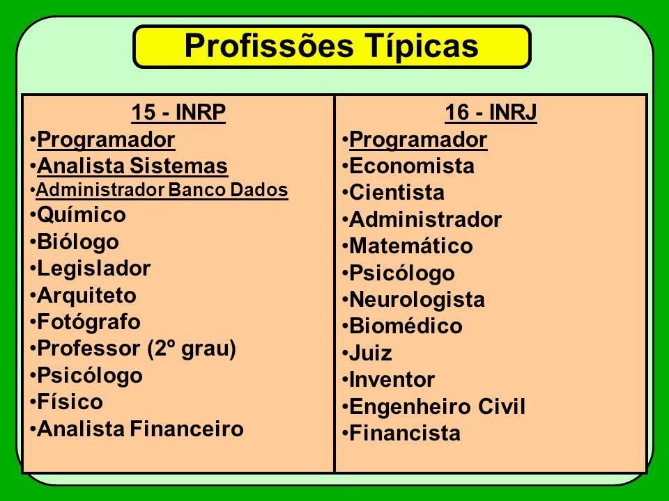 Profissões Típicas 15 - INRP Programador Analista Sistemas Químico