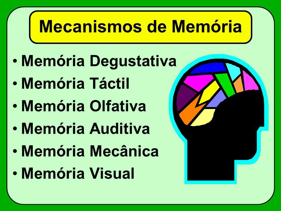 Mecanismos de Memória Memória Degustativa Memória Táctil