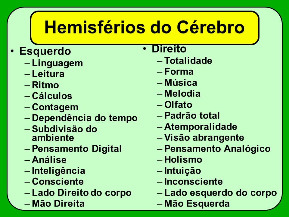 Hemisférios do Cérebro