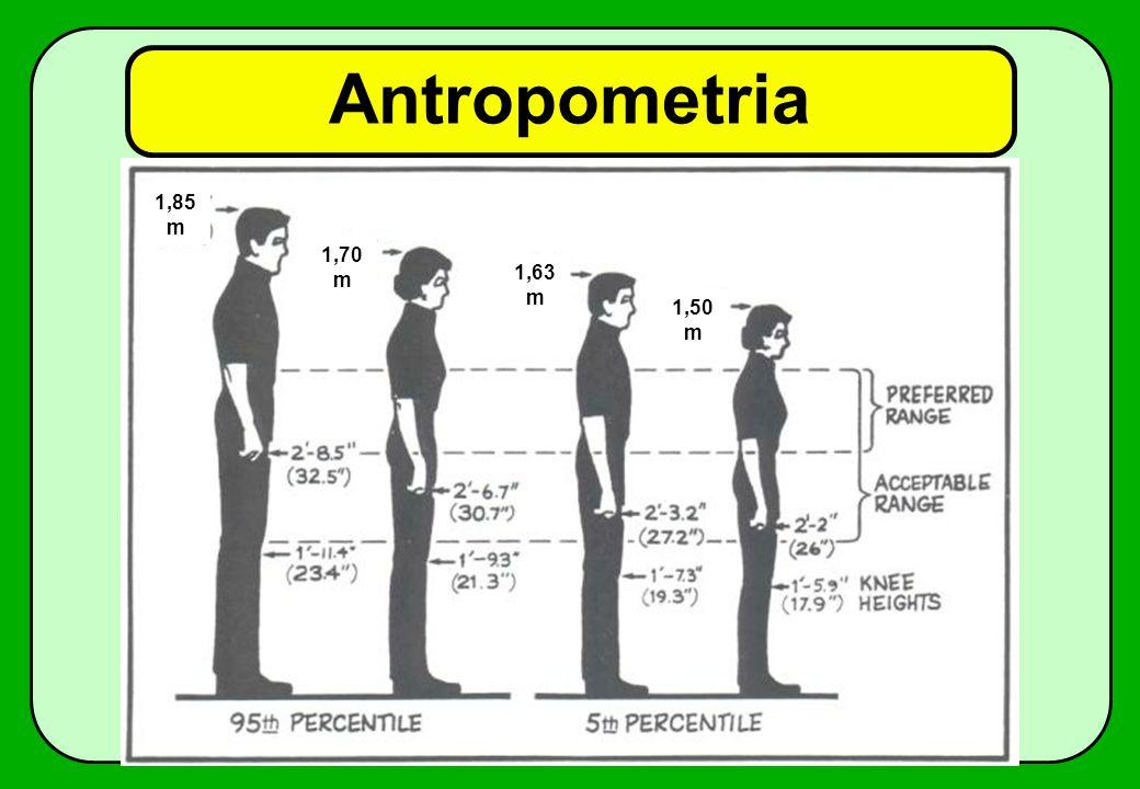 Antropometria 1,85m 1,70m 1,63m 1,50m