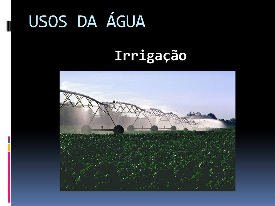 USOS DA ÁGUA Irrigação