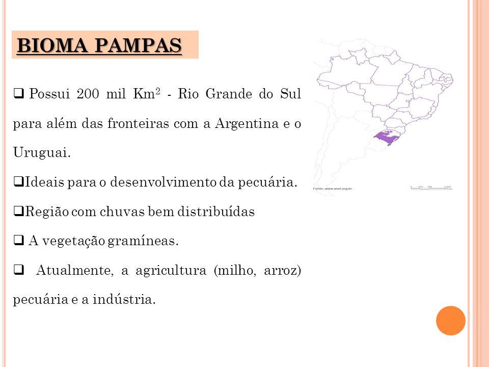 BIOMA PAMPASPossui 200 mil Km2 - Rio Grande do Sul para além das fronteiras com a Argentina e o Uruguai.