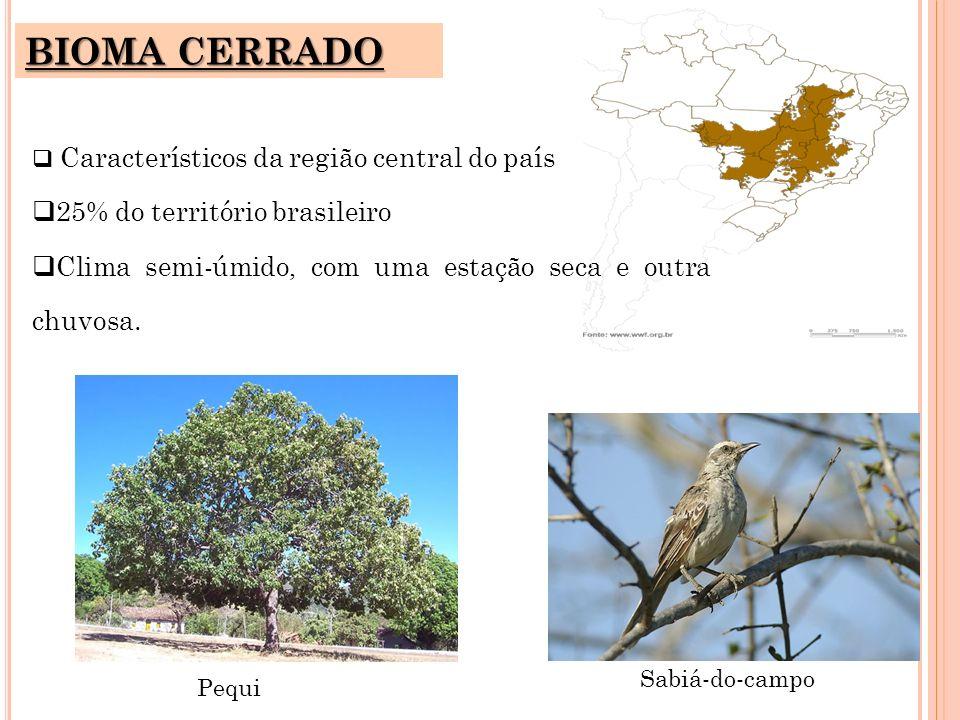 BIOMA CERRADO 25% do território brasileiro
