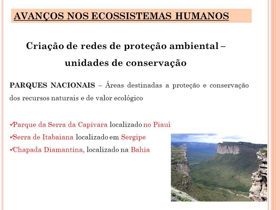 Criação de redes de proteção ambiental – unidades de conservação
