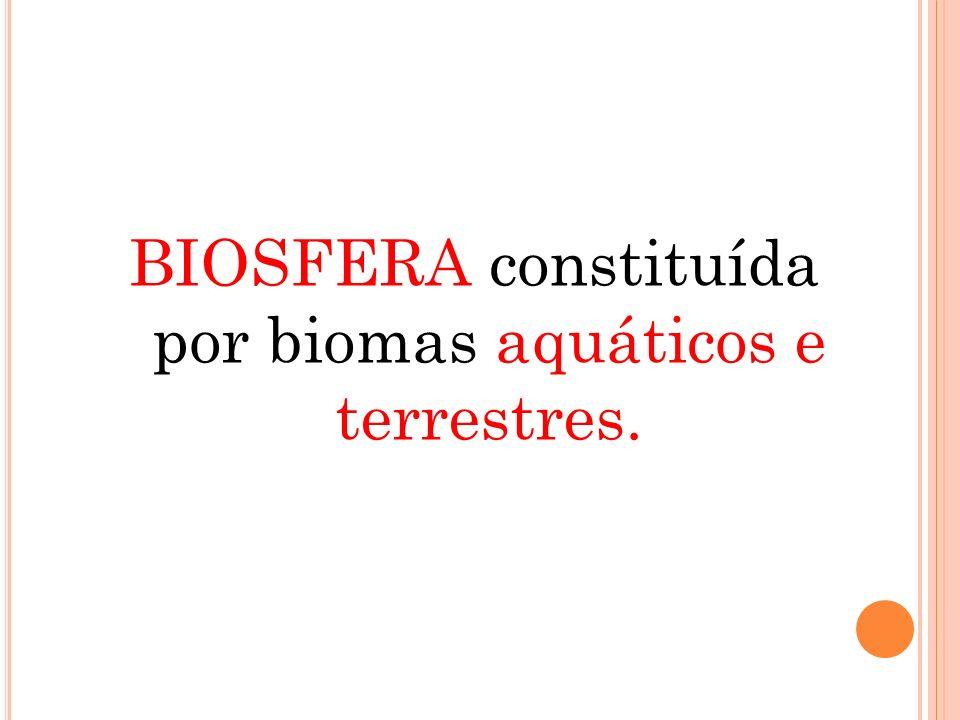 BIOSFERA constituída por biomas aquáticos e terrestres.