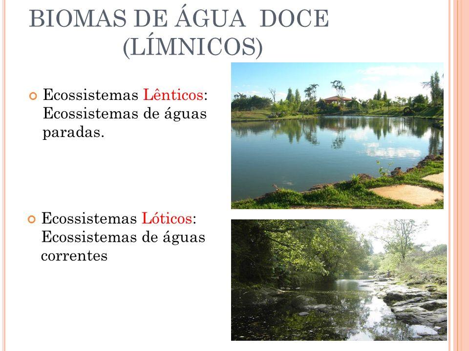 BIOMAS DE ÁGUA DOCE (LÍMNICOS)