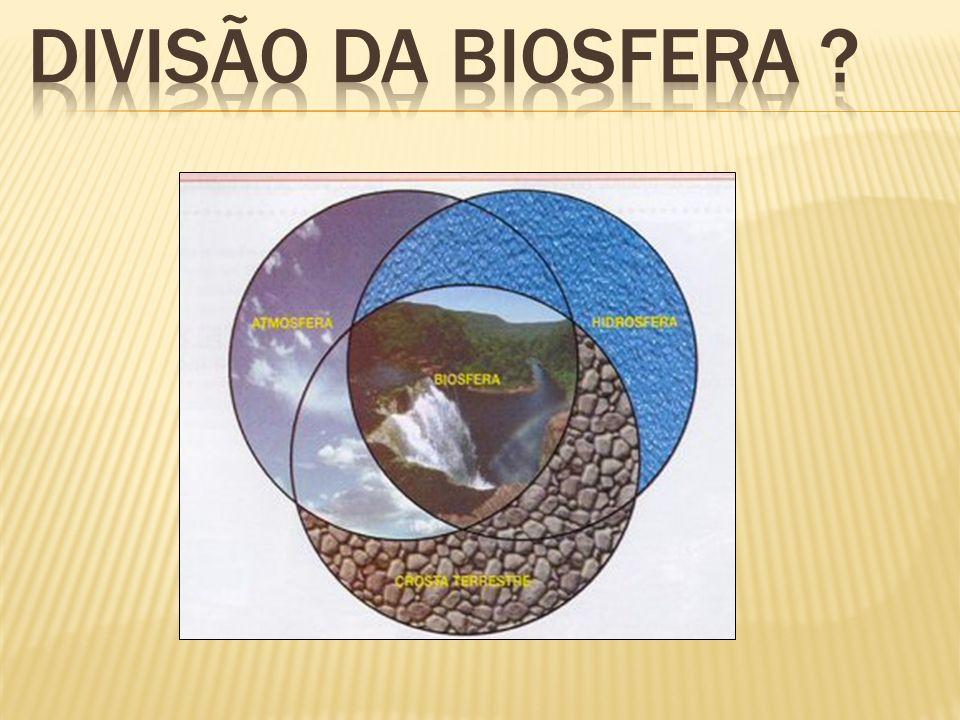 Divisão da Biosfera