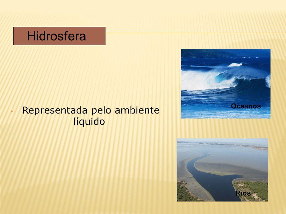 Representada pelo ambiente líquido