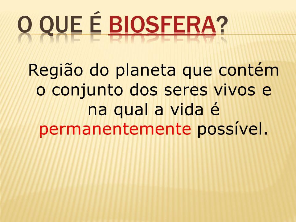 O que é Biosfera.