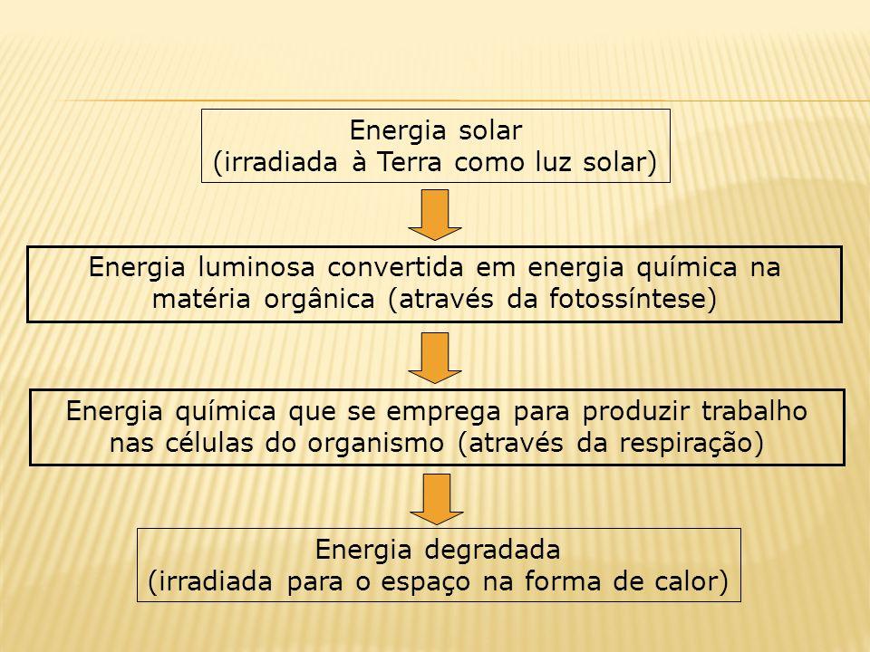 (irradiada à Terra como luz solar)