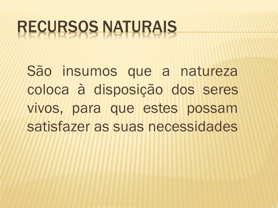 Recursos Naturais São insumos que a natureza coloca à disposição dos seres vivos, para que estes possam satisfazer as suas necessidades.