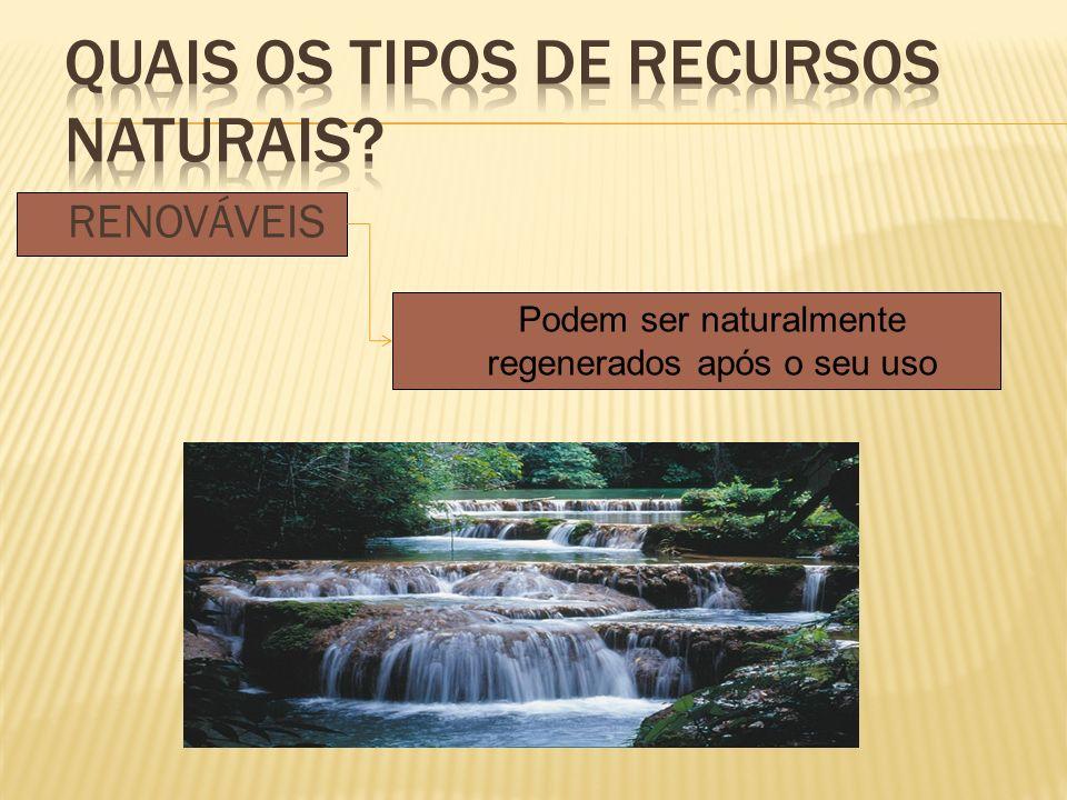 Quais os tipos de recursos Naturais
