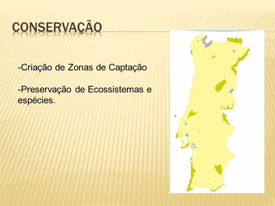 Conservação Criação de Zonas de Captação