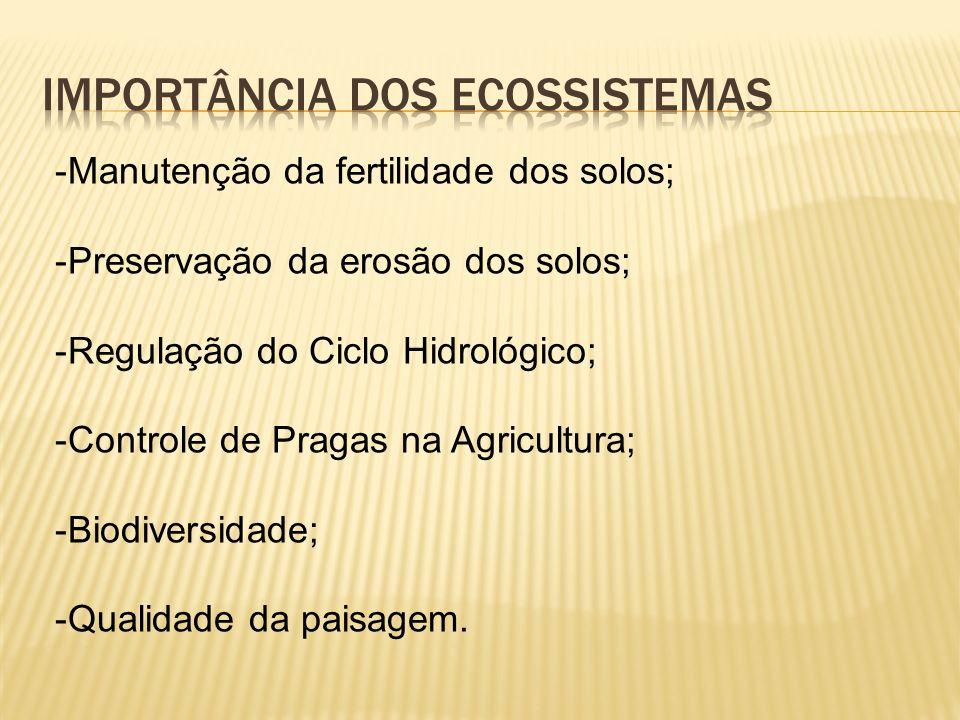 Importância dos ecossistemas