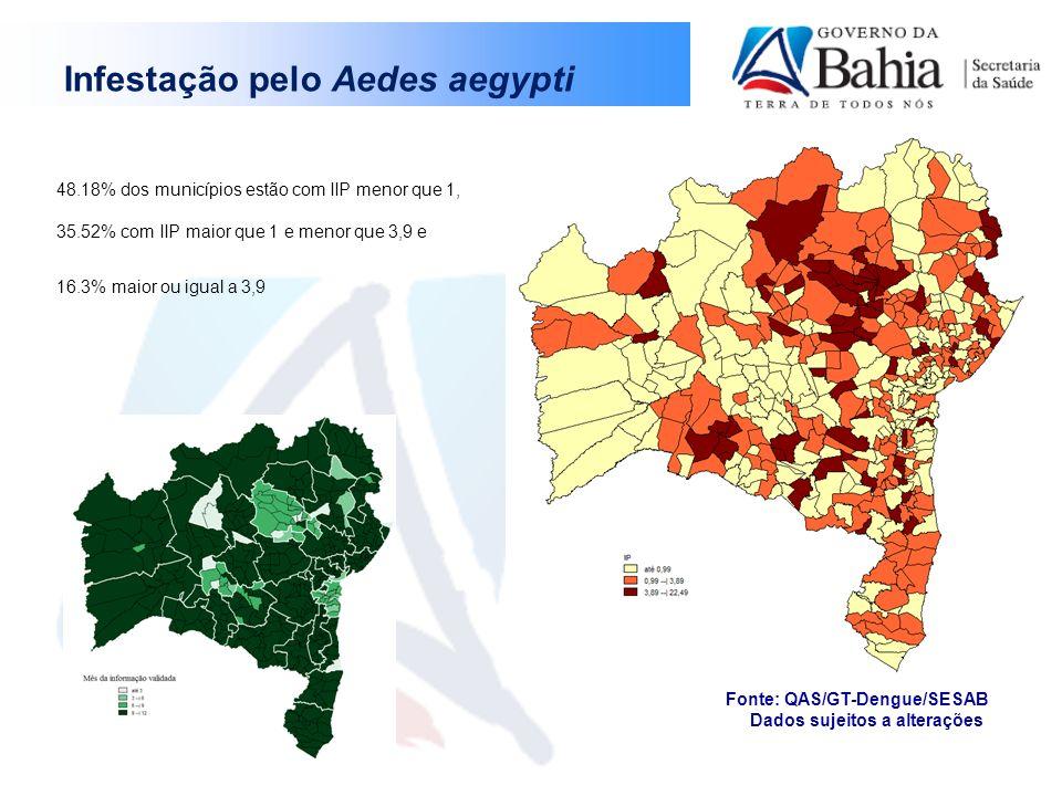 Infestação pelo Aedes aegypti
