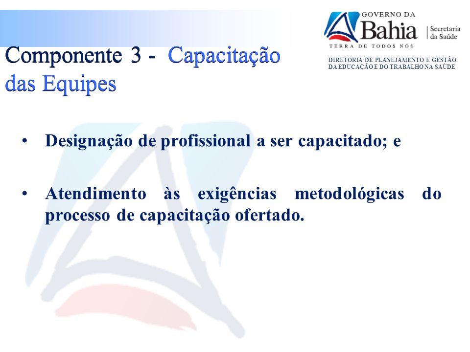 Componente 3 - Capacitação das Equipes