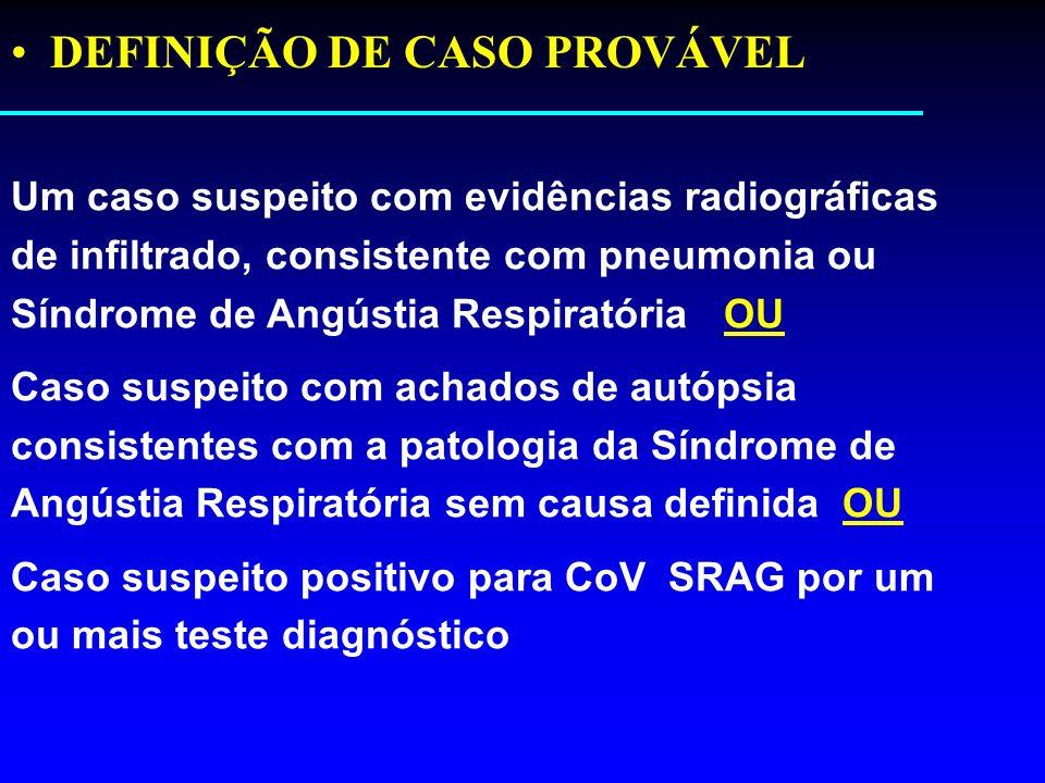 DEFINIÇÃO DE CASO PROVÁVEL