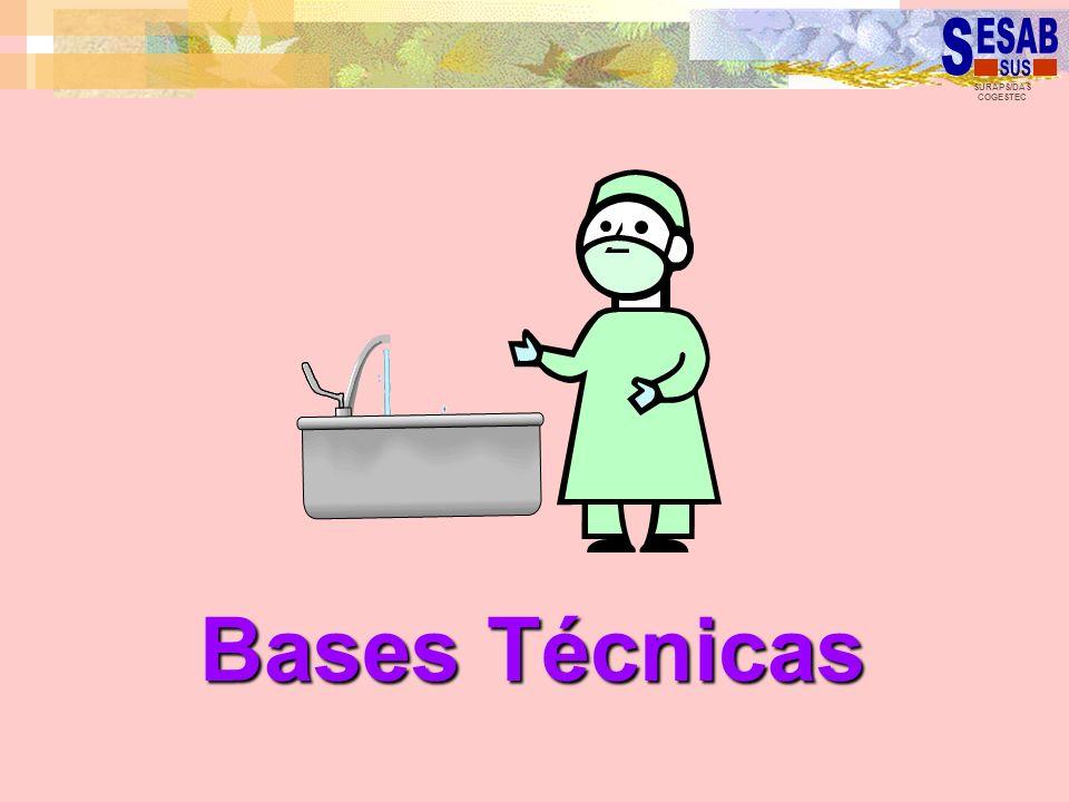 Bases Técnicas
