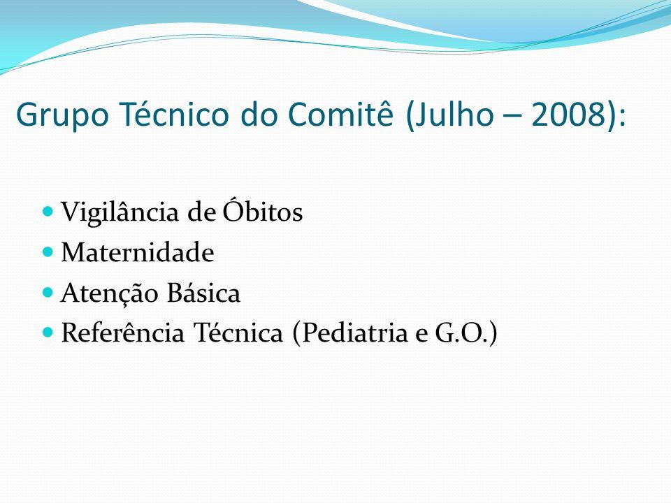 Grupo Técnico do Comitê (Julho – 2008):