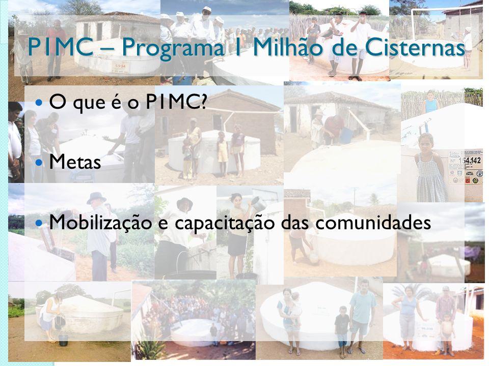 P1MC – Programa 1 Milhão de Cisternas