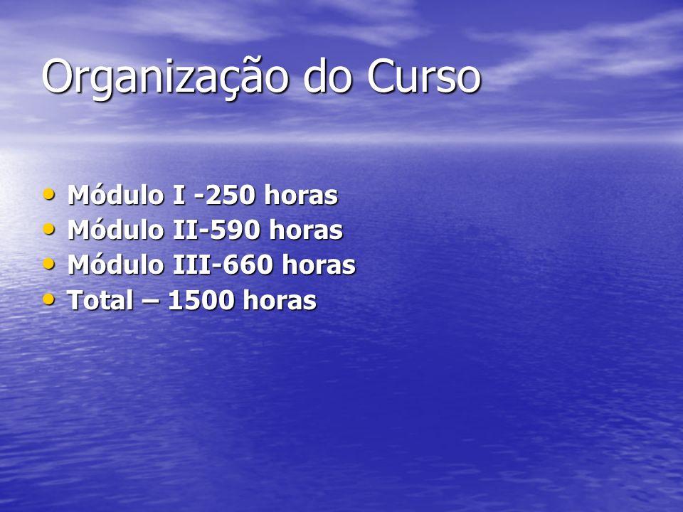 Organização do Curso Módulo I -250 horas Módulo II-590 horas