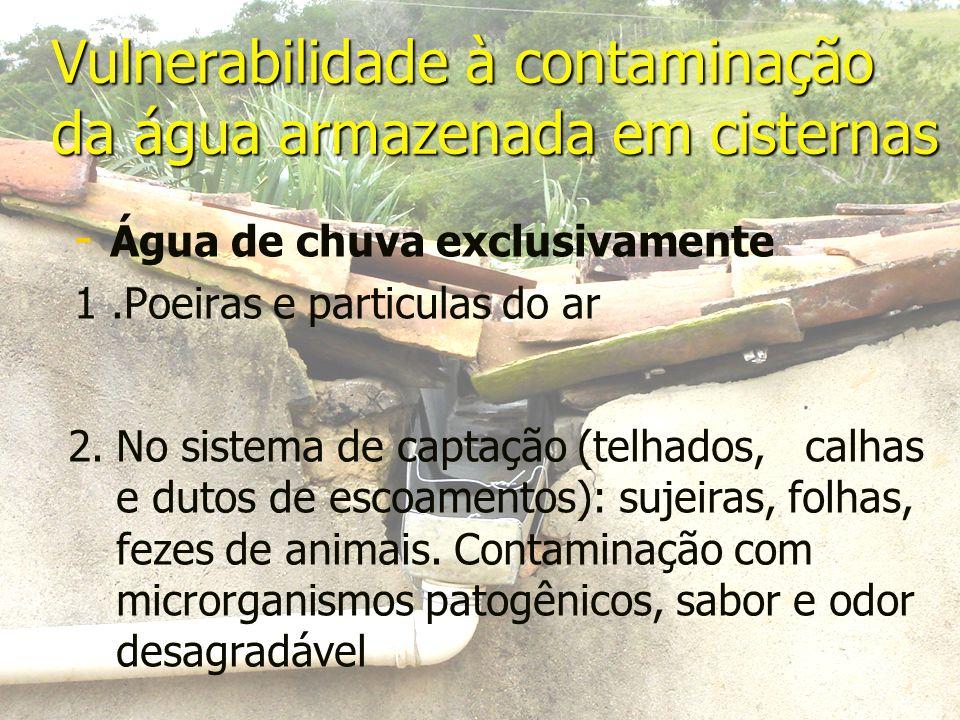 Vulnerabilidade à contaminação da água armazenada em cisternas