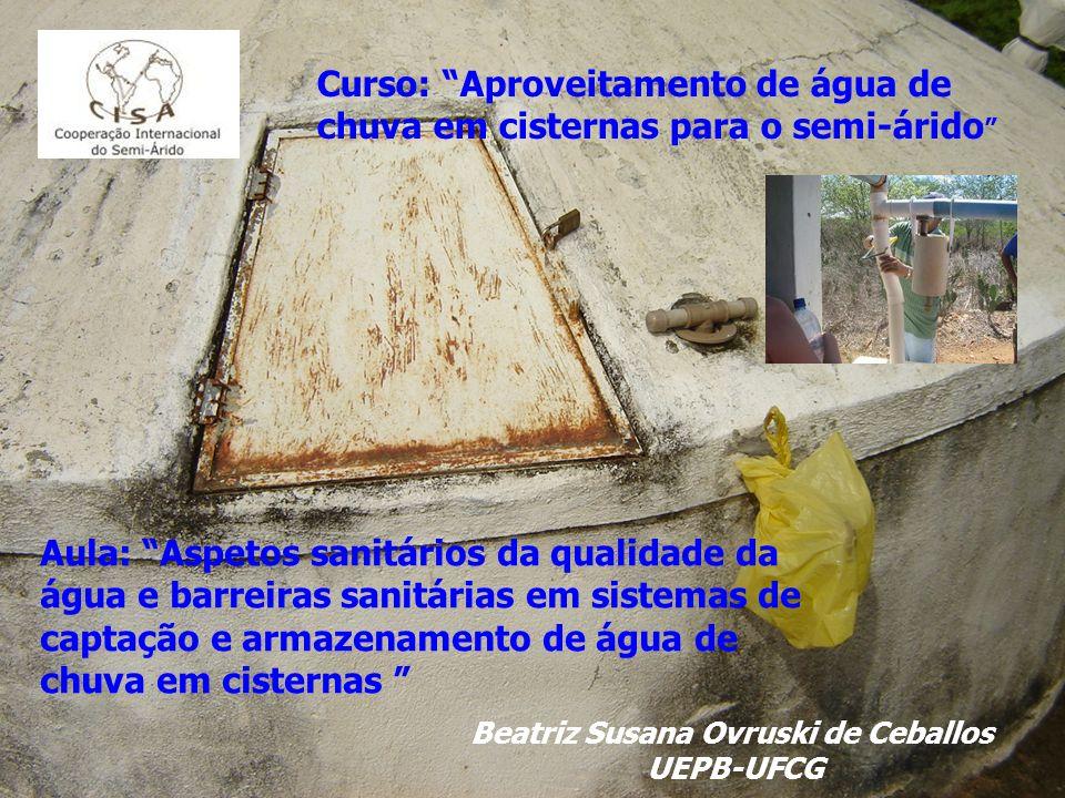 Beatriz Susana Ovruski de Ceballos