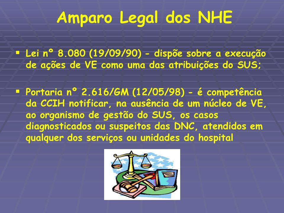 Amparo Legal dos NHE Lei nº 8.080 (19/09/90) - dispõe sobre a execução de ações de VE como uma das atribuições do SUS;