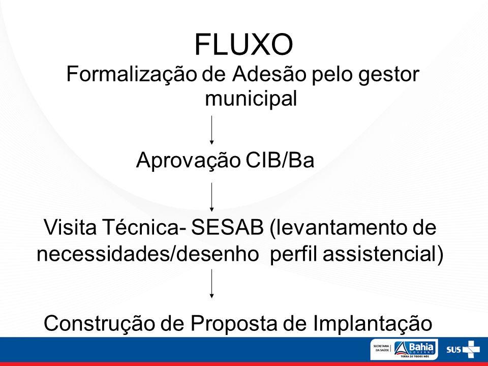 Formalização de Adesão pelo gestor municipal