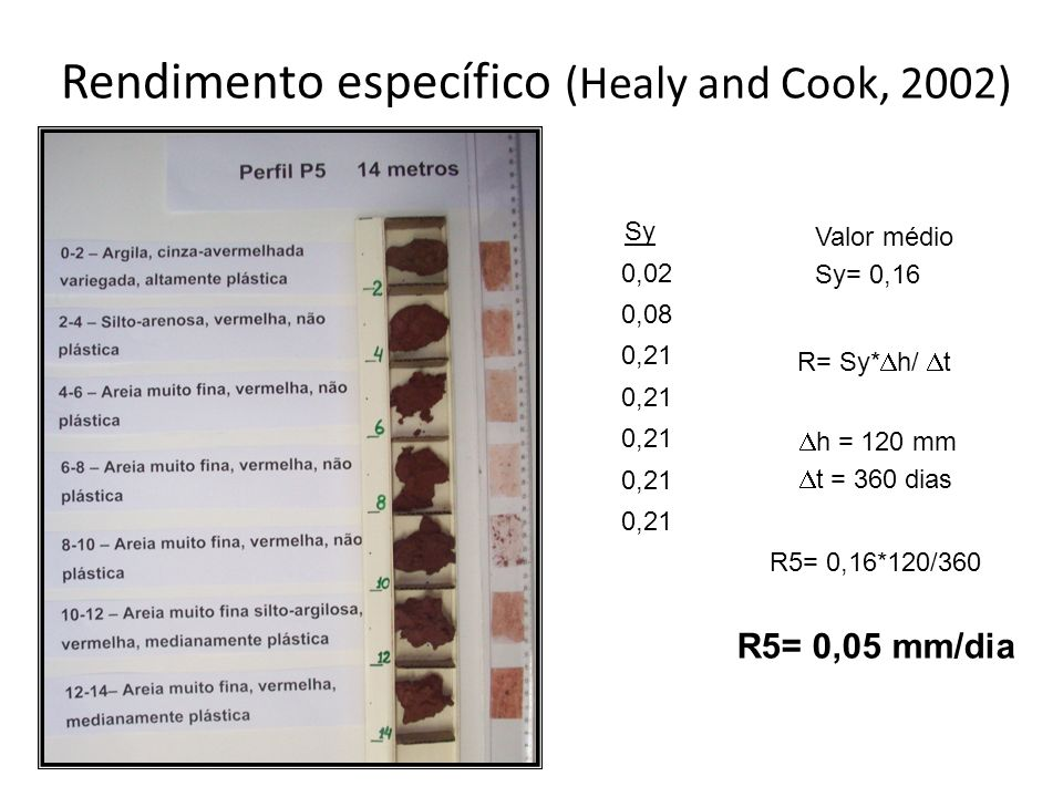 Rendimento específico (Healy and Cook, 2002)