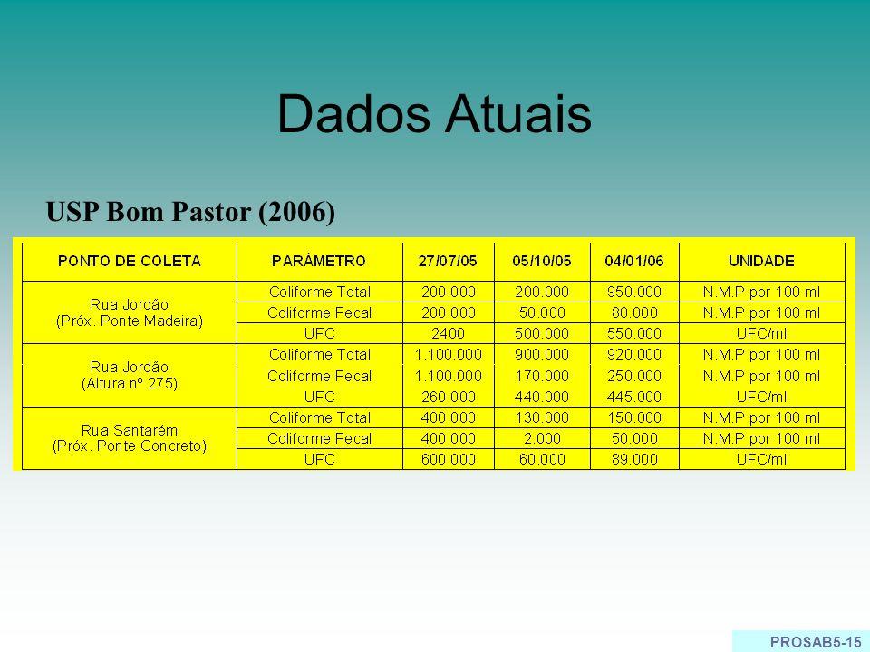 Dados Atuais USP Bom Pastor (2006)