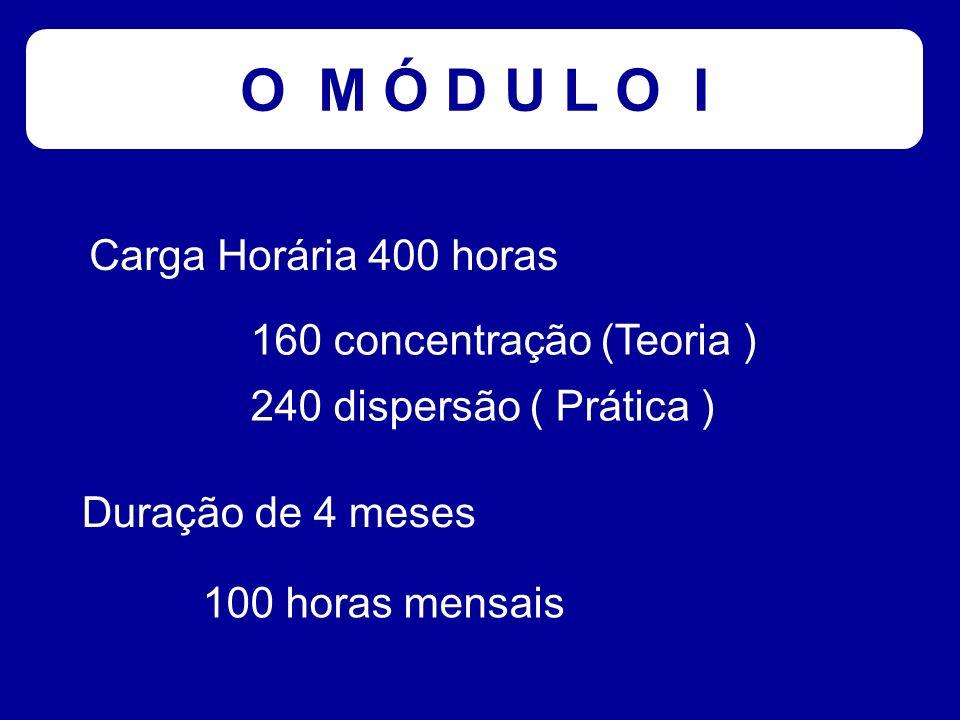 O M Ó D U L O I Carga Horária 400 horas 160 concentração (Teoria )