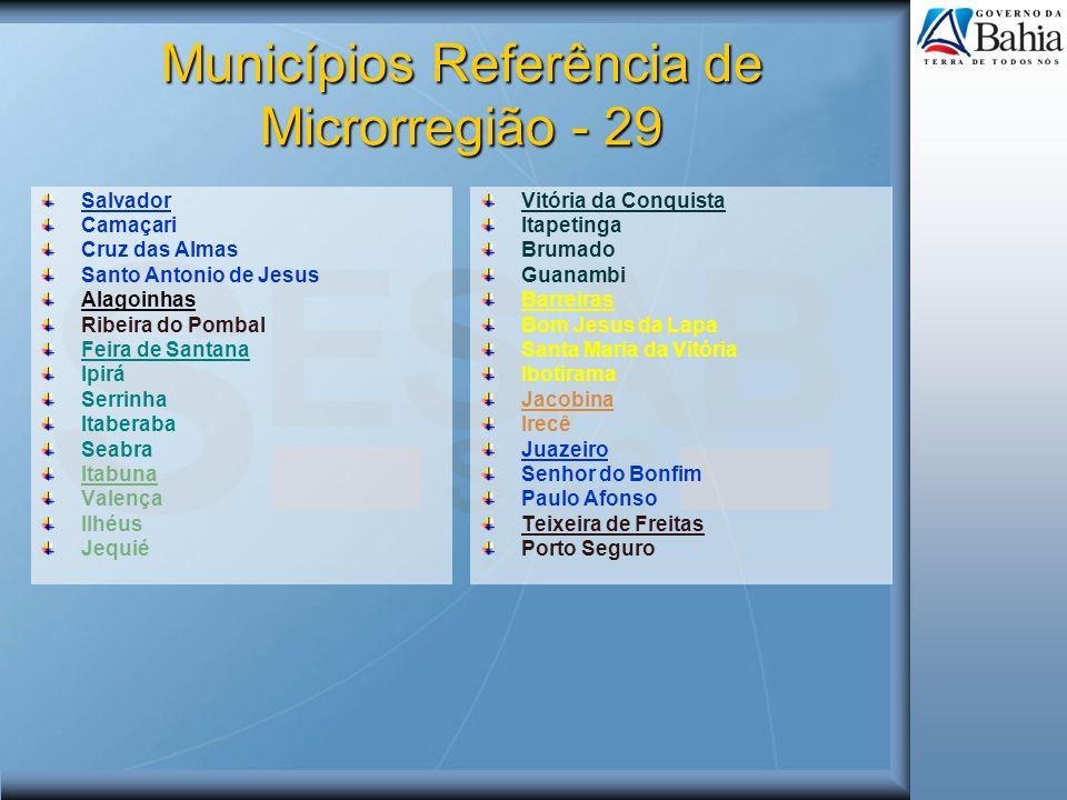 Municípios Referência de Microrregião - 29