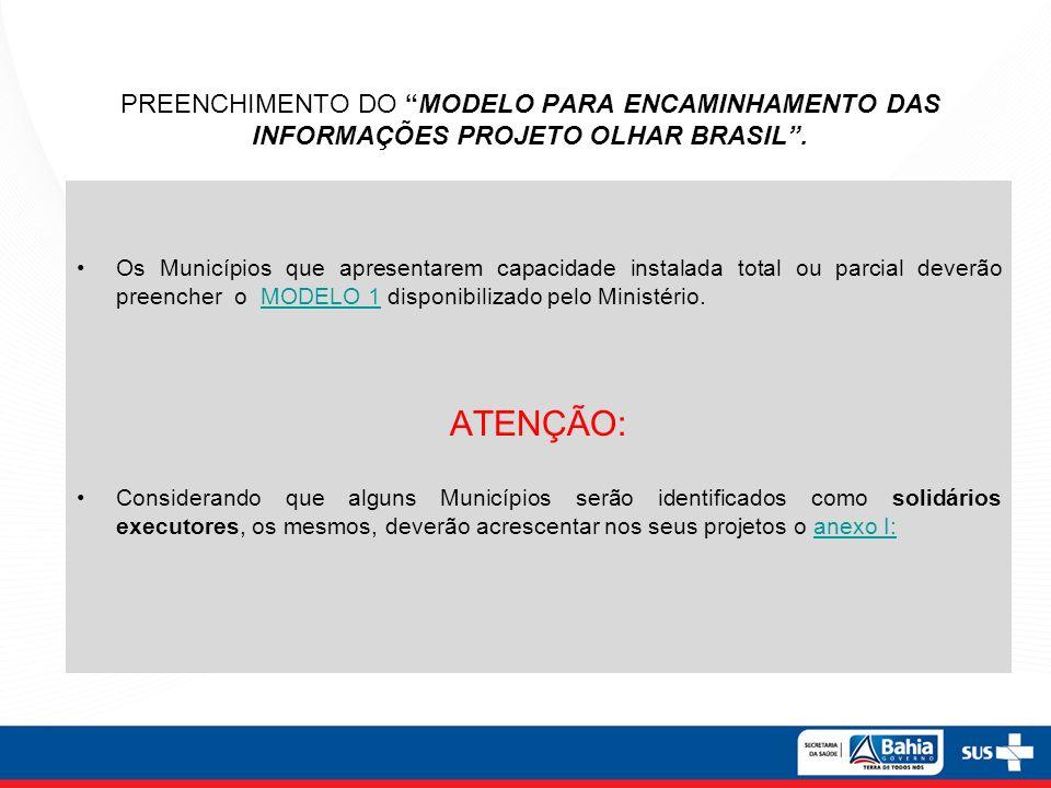PREENCHIMENTO DO MODELO PARA ENCAMINHAMENTO DAS INFORMAÇÕES PROJETO OLHAR BRASIL .