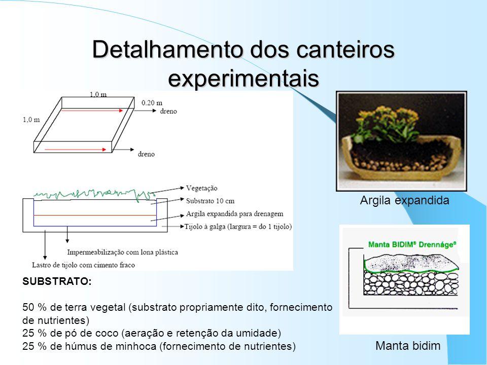 Detalhamento dos canteiros experimentais