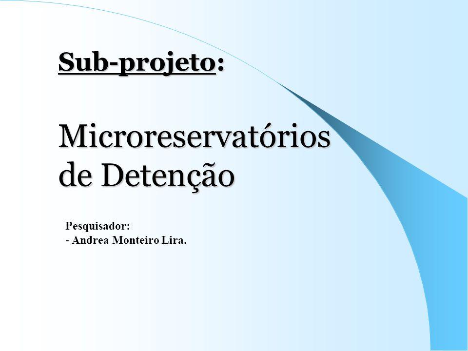 Sub-projeto: Microreservatórios de Detenção