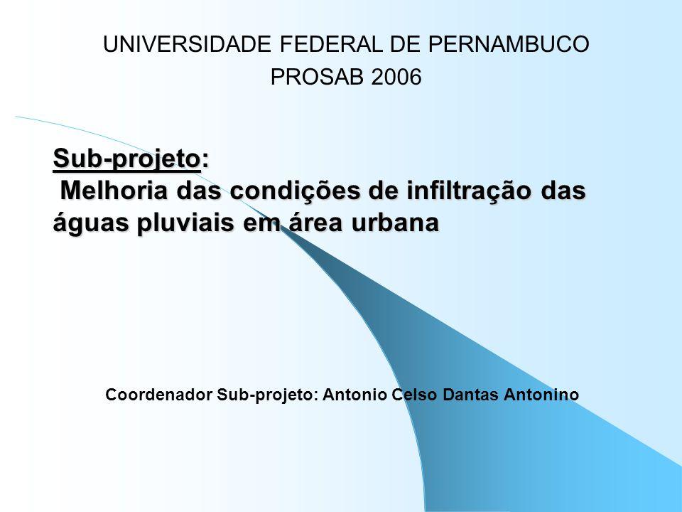 Coordenador Sub-projeto: Antonio Celso Dantas Antonino