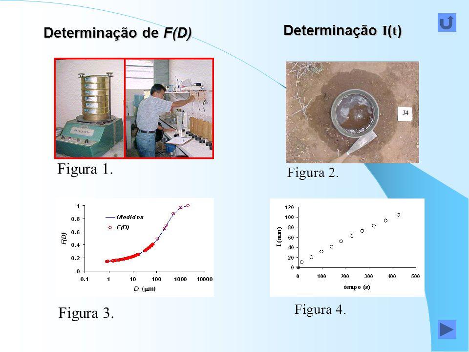 Figura 1. Figura 3. Determinação I(t) Determinação de F(D) Figura 2.