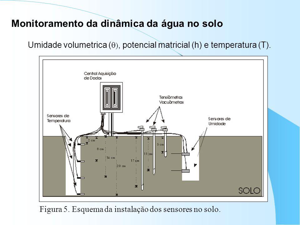 Monitoramento da dinâmica da água no solo