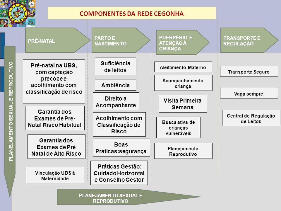 COMPONENTES DA REDE CEGONHA